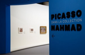 picasso-expo